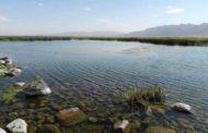 آب ایستاده ناور؛ دریاچهای در ولسوالی ناور غزنی